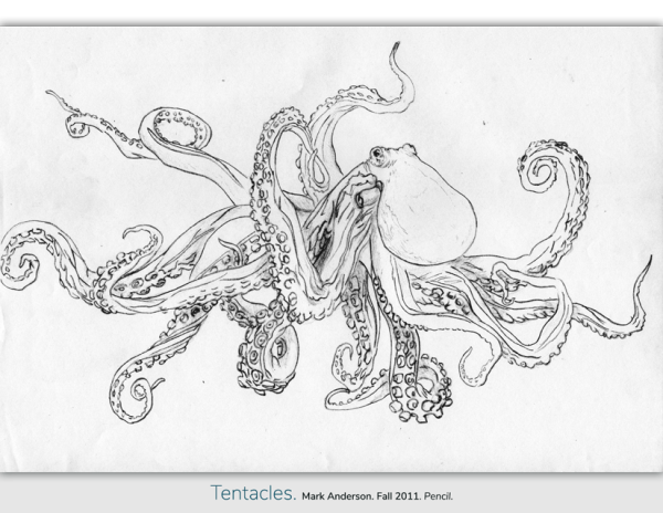 Octopus with many tentacles